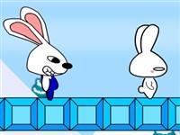 2 Kişilik Tavşan