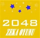 2048 Zeka Oyunu