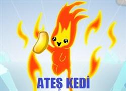 Ateş Kedi Fasülye Toplama