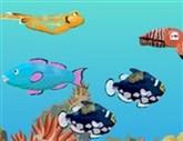 Balık Bulucu