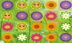 Çiçek Eşleştirme