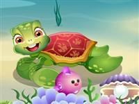 Deniz Kaplumbağasının Bakımı