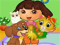 Dora Hayvan Bakımı