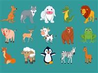 İngilizce Hayvanları Öğreniyorum