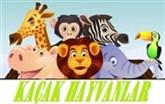 Kaçak Hayvanlar