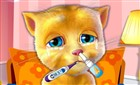 Kedi Ginger Tedavisi