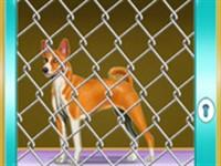 Köpeği Kafesten Kurtarma Görevi