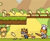 Koşucu Kediler