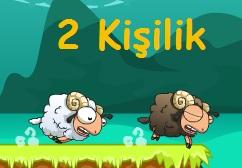 Koşucu Koyunlar
