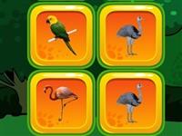 Kuş Eşleştirme