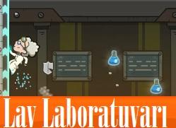 Lav Laboratuvarı