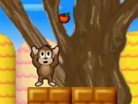 Meyveci Maymun