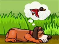 Ördek Avcısı