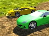 Ormanda Araba Yarışı