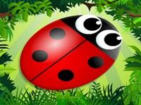 Orman Böcekleri