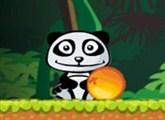 Panda ve Portakalı