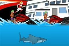 Saldırgan Köpek Balığı