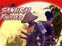Samuray Dövüşçüsü