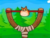 Sapanla Kedi Fırlat