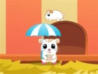 Şemsiyeli Kedi