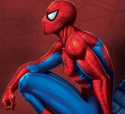 Spiderman Kapışma