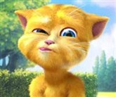 Türkçe Konuşan Kedi