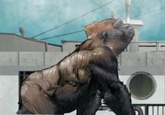 Vahşi Goril
