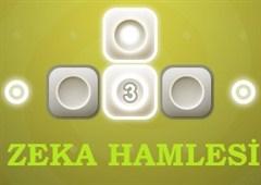 Zeka Hamlesi